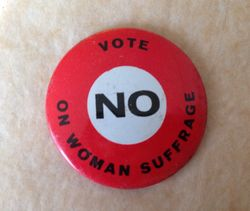 Anti-suffrage pin